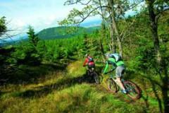 mountainbiken_rennsteig_rdax_275x192
